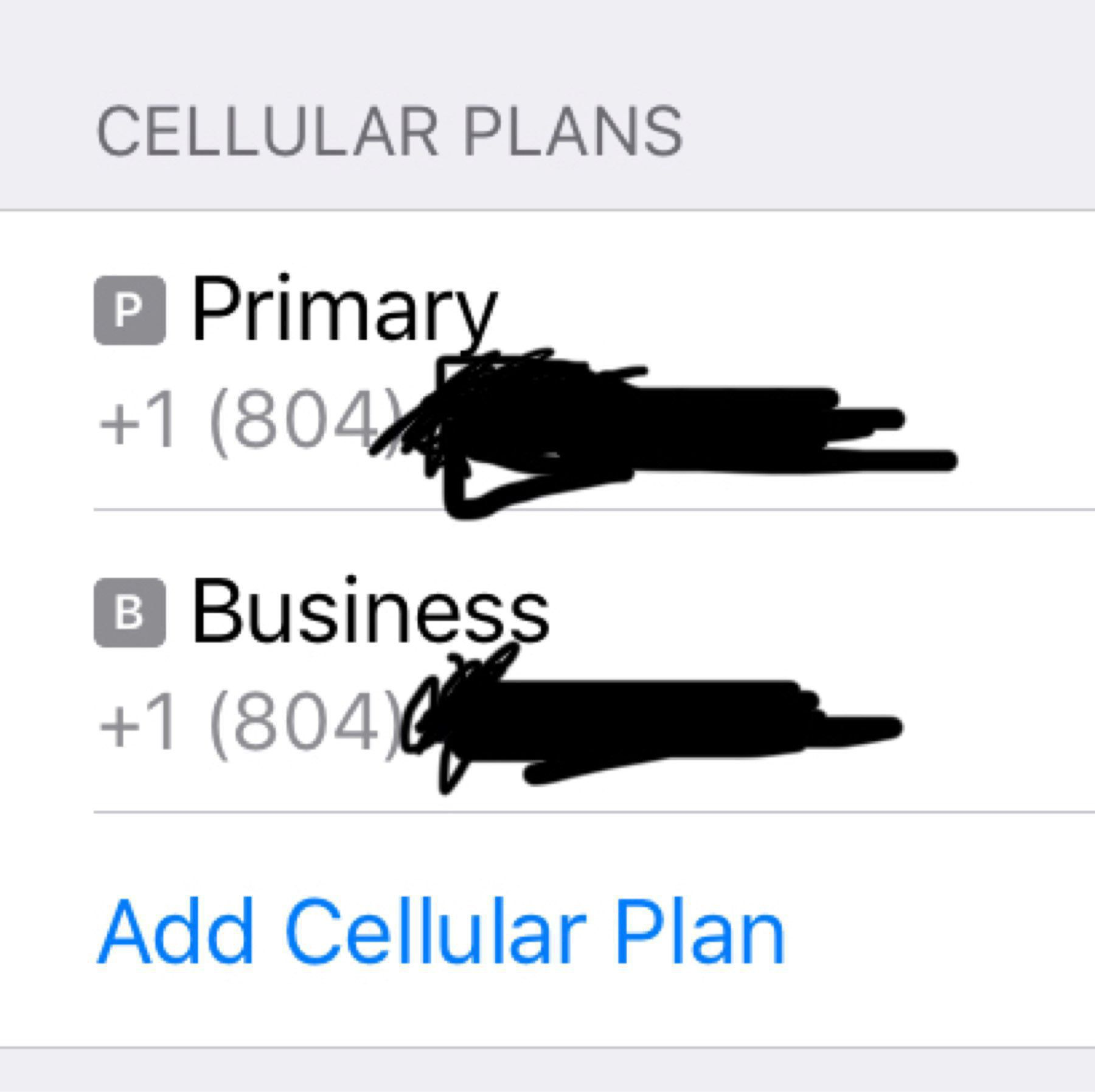Two phone lines in iOS Cellular settings